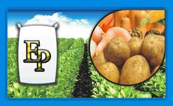 13º Jornada Técnica Agro Papa 2016